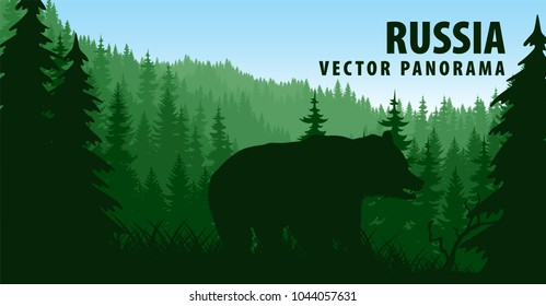 vector panorama of Russia with brown bear in woodland taiga forest