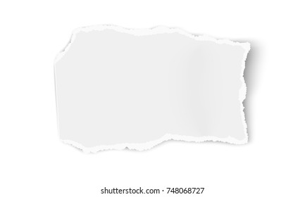 Vector paper wisp isolated on white background. Template paper design.
