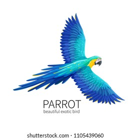 Vector parrot. Exotic tropical bird flies. Bright illustration cartoon style for summer tropical paradise advertising vacation design.