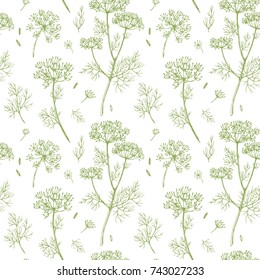 vector pattern of dill, sulfur root sketch, fennel  linear illustrations