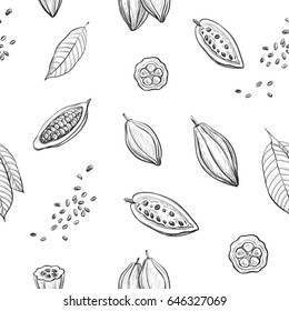 Vector pattern hand drawing of cocoa. Sketch cocoa fruit and leaves on white background