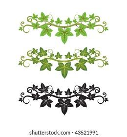 Vector pattern illlustration of ivy plant