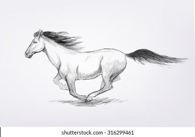 Vector pencil hand drawn running horse