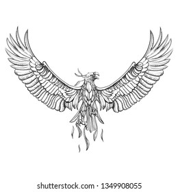 Vector Vector Phoenix Hawk with Wings Spread, Hand Drawn Tatoo Illustration Logo. Professional Business Company Branding Icon. Modern Graphic Design Symbol, Shape, Sign.