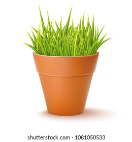 Vector Photo Realistic Illustration Of The Flowerpot With Green Fresh Grass Isolated On White