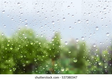 Vector Photo Realistic Image Of Raindrops On Window Glass At Spring In The Garden