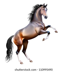 Vector photo-realistic bay horse rearing up isolated on white background