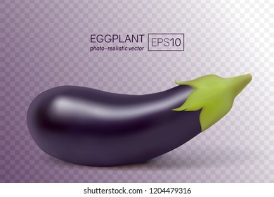 Vector photo-realistic fresh aubergine on a transparent background. 3D eggplant illustration. This aubergine can be placed on any background.