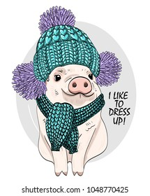 Vector pig with blue knitted hat and scarf. Hand drawn illustration of dressed piggy.