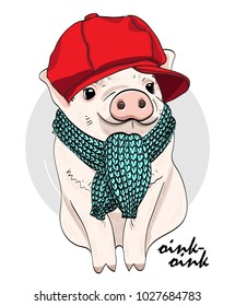 Vector pig with red cap and scarf. Hand drawn illustration of dressed piggy.