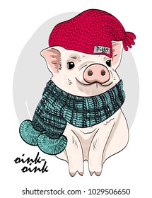 Vector pig with red knitted hat and scarf. Hand drawn illustration of dressed piggy.