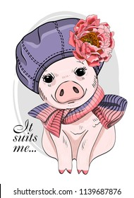 Vector pig with violet hat, flower and knitted scarf. Hand drawn illustration of dressed piggy.