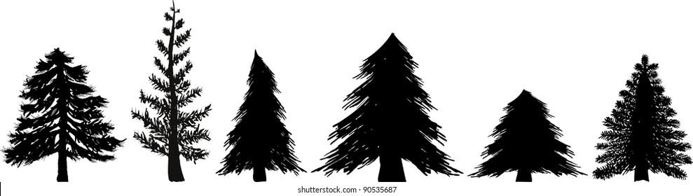 Vector Pine and Cedar tree Set