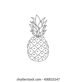 Vector pineapple illustration.