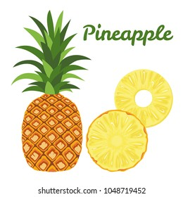 Vector pineapple isolated on white background. Illustration of exotic fresh fruit in flat style. Whole pineapple, leaves and slice.