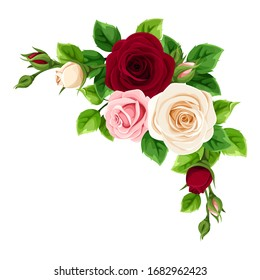 Vector pink, burgundy and white roses decorative element isolated on a white background.