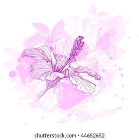 vector pink hibiscus flowers & vintage ornament