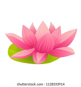 Vector pink lotus flower in cartoon style isolated on white background.