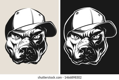 Vector Pit Bull Wearing a Cap