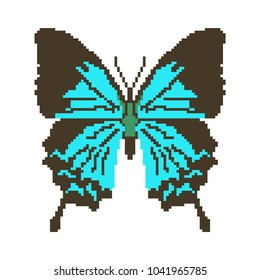 Vector pixel art butterfly isolated.