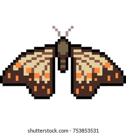 vector pixel art butterfly moth isolated