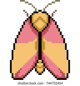 vector pixel art insect moth isolated