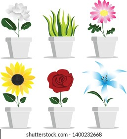 vector of plant in flower pots for use in design work