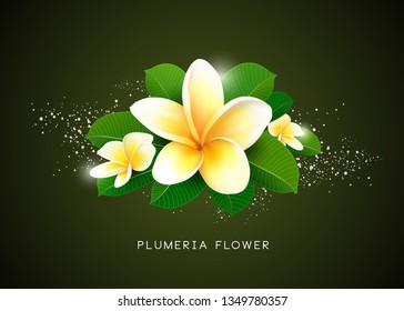 Vector Plumeria flower and leaf design, illustration