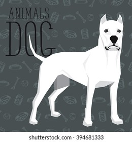 Vector polygon dog concept. Vector polygon geometric dogs collection with seamless background. Dogo Argentino dog