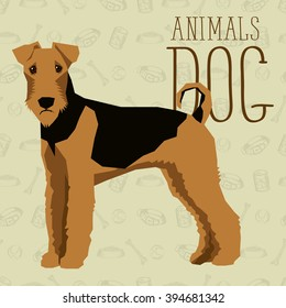 Vector polygon dog concept. Vector polygon geometric dogs collection with seamless background. Airedale Terrier dog