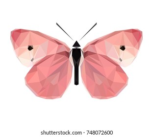 Vector polygonal butterfly. Low poly insect illustration. Triangle color animal image.
