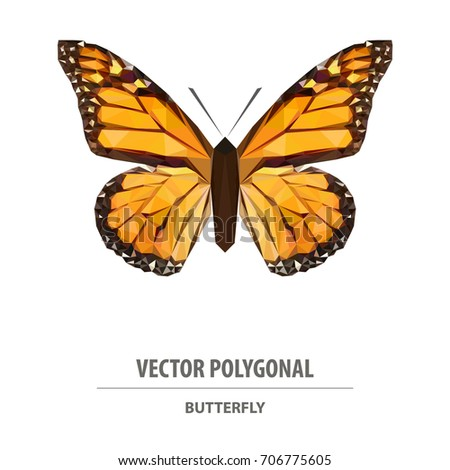 1b46a722febd Vector Polygonal Butterfly Low Poly Animal Stock Vector (Royalty ...