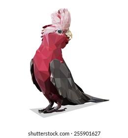 Vector Polygonal Galah Rose Breasted Cockatoo