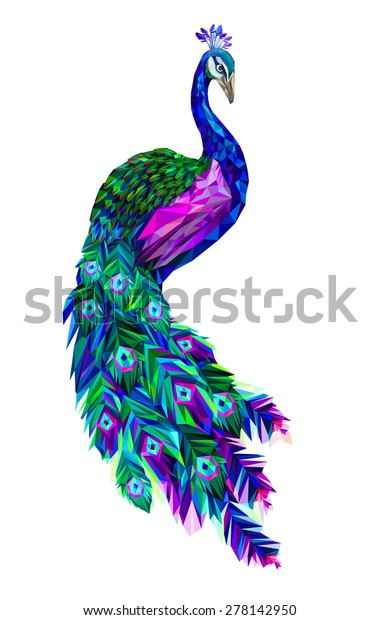 Vector polygonal peacock illustration. Stylized tropical bird in poly design