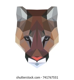 Puma Isolated Images Stock Photos Vectors Shutterstock