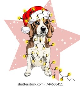Vector portrait of beagle dog wearing santa hat Christmas lights garland. Isolated on star and snow. Sketched color illustration. Christmas, Xmas, New year. Party decoration, promotion, greeting card.4