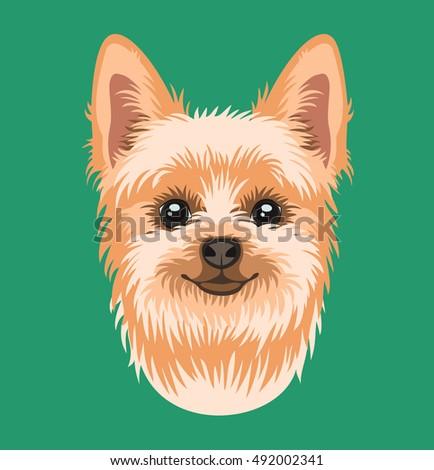 Vector Portrait Dog Breed Yorkshire Terrier Stock Vector Royalty
