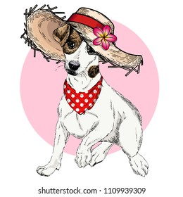 Vector portrait of Jack Russel terrier dog wearing straw hat, flower and polka dot bandana. Summer fashion illustration. Hand drawn pet portait. Poster, t-shirt print, holiday, postcard, summertime
