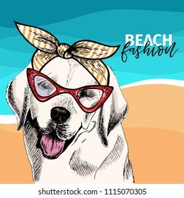 Vector portrait of Labrador retriever dog wears sunglasses, retro bandana. Summer fashion illustration. Sea, beach, ocean. Hand drawn pet portait. Poster, t-shirt print, holiday, postcard, summertime.