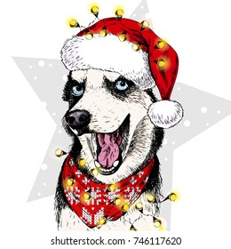 331726f1454a3 Vector portrait of Siberian Husky dog wearing santa hat Christmas lights  garland. Isolated on star