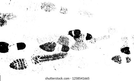 Vector Print Texture. footprints human shoes silhouette in snow . Design Element . Traces of Boot . Mud splash grunge texture