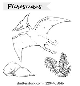 Vector Pterosaur with plant and stone over white.Jurassic Wildlife.Wild animals dinosaurus.Animal character.Wild creatures of the Jurassic period.Black dinosaurus Silhouette