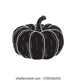 Vector pumpkin in black and white. Food sketch illustration for print, web, mobile and infographics isolated on white background.