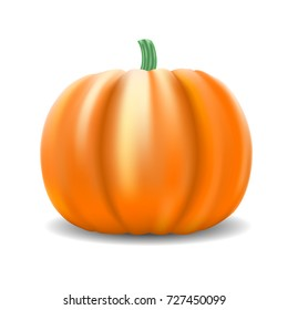 Vector Pumpkin Isolated on White Background. Ripe Orange Pumpkin with Shadow. Vector Illustration.