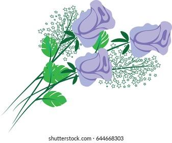 vector purple rose flowers