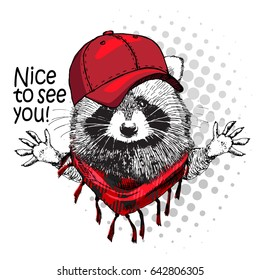 Vector raccoon with red cap. Hand drawn illustration of dressed racoon