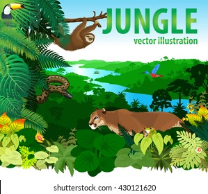 vector rainforest jungle with differend animals