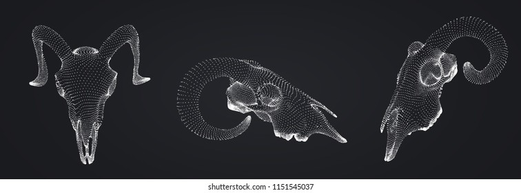 vector ram skull. 3d image from dot and point