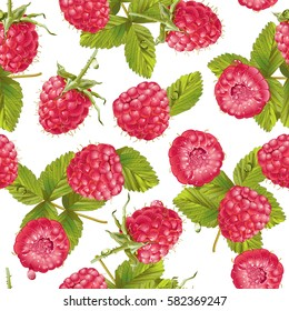 Vector raspberry seamless pattern on white. Background design for sweets and pastries filled with raspberry, dessert menu, health care products, natural cosmetics. Best for wrapping paper.