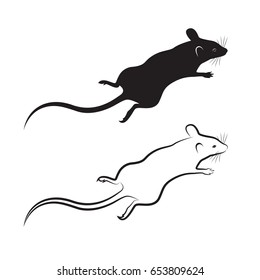 Vector of a rat design on white background. Mammal Animal.
